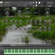 Geosonics_Swamps